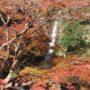 布引の滝の紅葉を見てきました ~2015年12月17日~