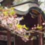 神戸の敏馬神社へお参りしてきました。